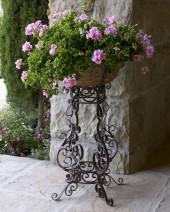 Iron Scroll Planter
