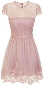 *Chi Chi London Petite Mink Embroidered Skater Dress